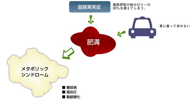 メタボリックシンドロームの図